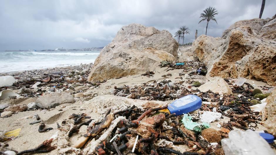 Auf Mallorca sind derzeit vor allem Strände rund um Palma ein Ärgernis -trübe Fäkalienabwässer schwimmen im Meer unter der Oberfläche. Auch wird viel Müll an Land gespült.