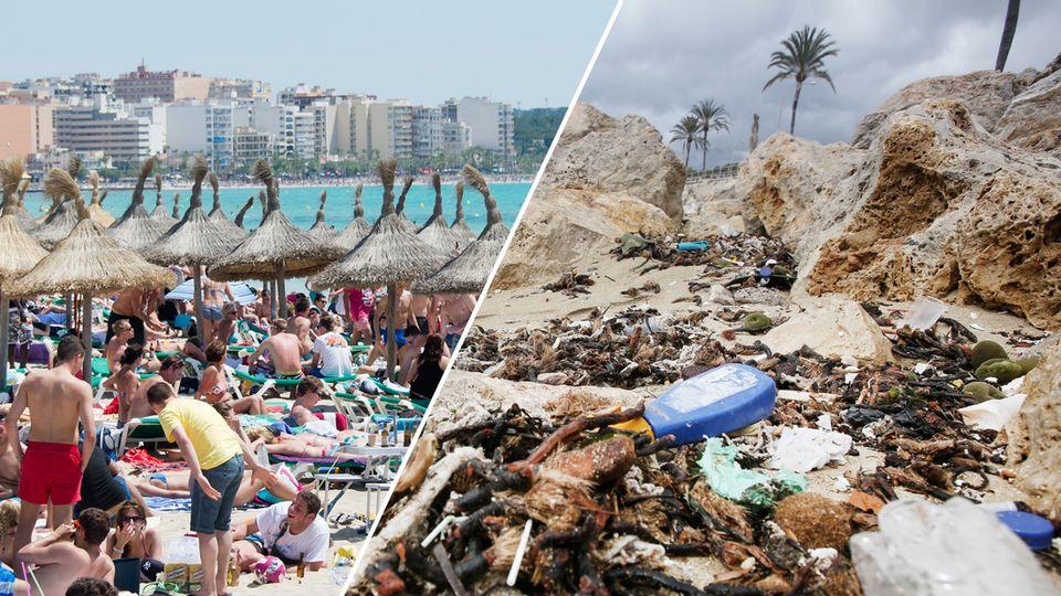 Abwasser-Probleme: Mallorca: Wer will schon zwischen Müll und Fäkalien baden?