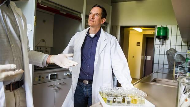 Jens Pistorius findet die Todesursache fast immer heraus. Er leitet das Institut für Bienenschutz in Braunschweig
