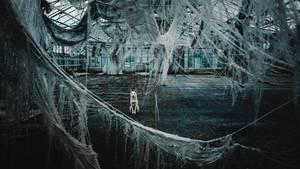 """Aesthetics of decay - """"Der Wind tobte und die alten zerrissenen Planen tanzten ihren eigenen Tanz und mittendrin eine Hundeschönheit die sehr souverän das Toben verfolgte."""""""
