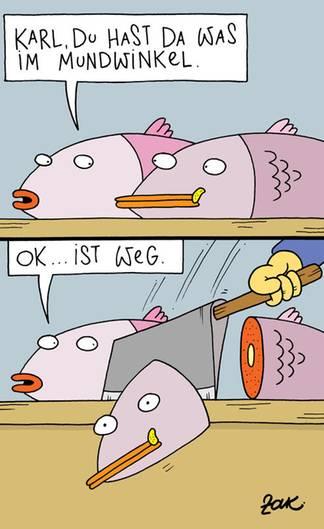 Cartoons Von Martin Zak Stern De