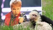 Justin Bieber und sein Affe