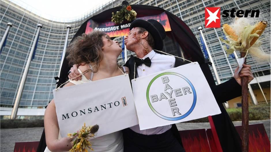 Umstrittener Unternehmenskauf: Bayer AG: Der Chemiekonzern hinter dem 56-Milliarden-Deal mit Monsanto
