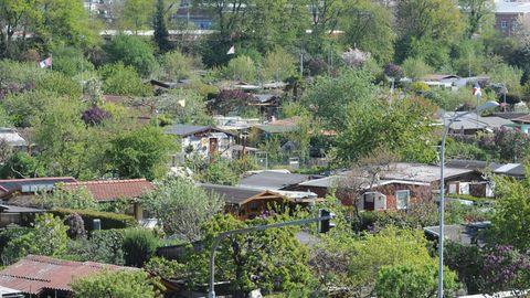 Große Unterschiede : Wie viel Schrebergärten in deutschen Städten kosten