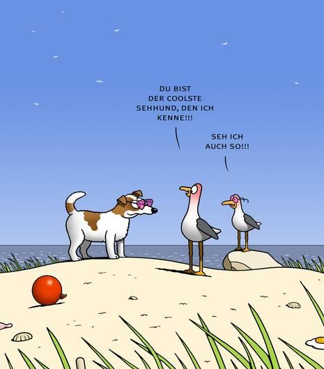 Tetsche Cartoons Wer Fliegt Da Vorbei Stern De
