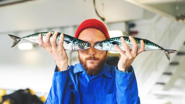 """""""Moin, Moin!"""" - Die Bewohner des Nordens vonDeutschlands nennen sich spaßeshalber auch Fischköppe(Symbolbild)"""