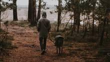 Mann und Hund im Wald