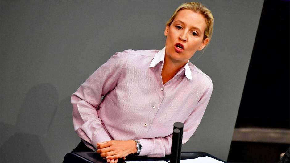 Leben und Skandale: Streitbar und skandalumwittert: Zehn Fakten zu AfD-Fraktionschefin Alice Weidel