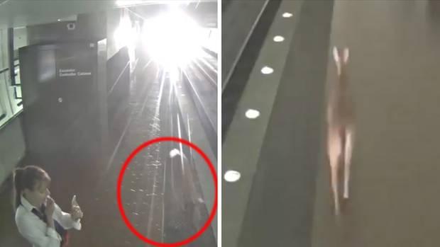 Ein Reh läuft direkt an einer Frau vorbei einen U-Bahnsteig entlang