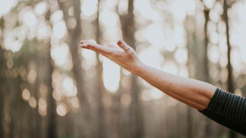 Ausgestreckte Hand im Wald