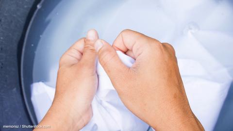Neulich im Netz: Pralle Blusen, bunte Federn: Nichts mehr zu lachen