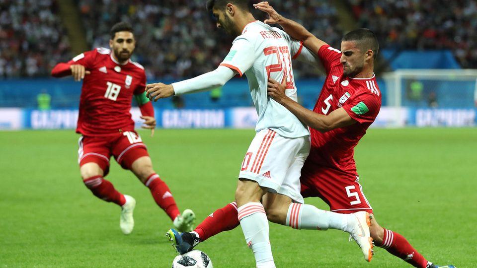 Iran Mohammadi