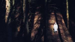 Der Wald ist seine Heimat. Dabei ist Ulrichs größter Wunsch, wieder richtig anzukommen. In einem Haus im Funkloch. Das sucht er schon seit Jahren. Erfolglos.