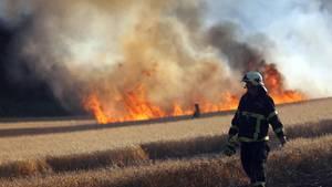 In Rostock löschen Feuerwehrleute ein Getreidefeld, das in Flammen steht