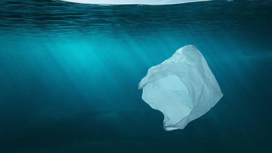 Eine Plastiktüte schwimmt im Wasser