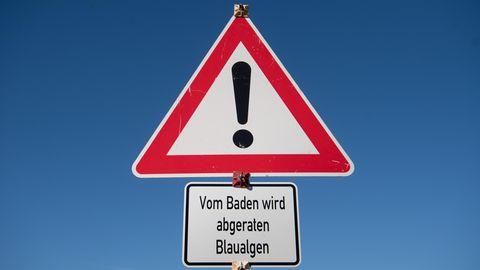 Von der Europäische Umweltagentur EEA wurden alle deutschen Oberflächengewässer schlecht bewertet.