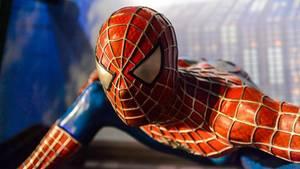 """""""Spider-Man"""" wurde von Stan Lee und Steve Ditko erfunden"""