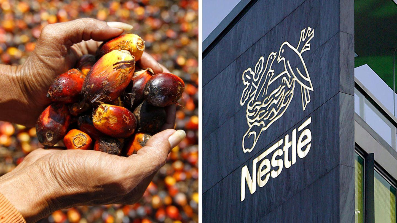 Nestlé hat Ärger mit Palmöl-Initiative