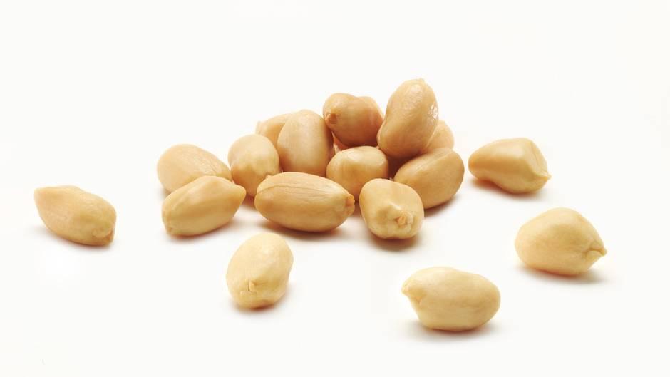 SteckbriefErdnuss  Bezogen auf jeweils 100 Gramm - Kalorien: 560 kcal; Fett: 48 Gramm; Eiweiß: 25 Gramm; Ballaststoffe: 12 Gramm  Erdnüsse sind streng genommen keine Nüsse, sondern zählen zu den Hülsenfrüchten. Sie enthalten deshalb etwas weniger Fett als herkömmliche Nüsse. Sportler schätzen die Hülsenfrüchte vor allem wegen ihres hohen Eiweißgehalts. In der Erdnuss steckt reichlichFolsäure. Sieist wichtig für den Stoffwechsel und beteiligt an vielen Wachstums- und Zellteilungsprozessen.