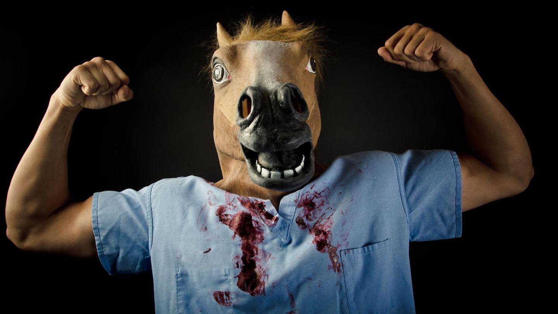 Dexter, die Pferde-Edition