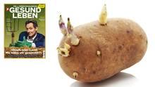 Keimende Kartoffel