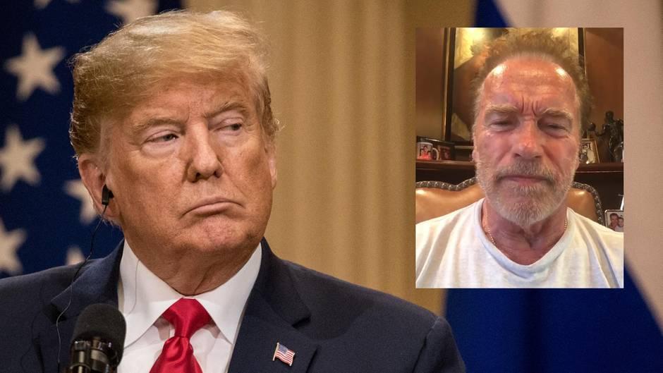 """Nach Trump-Putin Gipfel: """"Sie standen dort wie eine weiche Nudel"""": Arnold Schwarzenegger wirft Trump Landesverrat vor"""