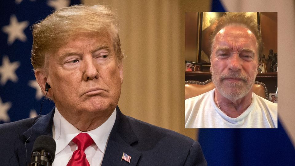 """Weltklimagipfel: """"Unser verrückter Führer macht nicht mit"""": Schwarzenegger kritisiert Trumps Klimapolitik"""