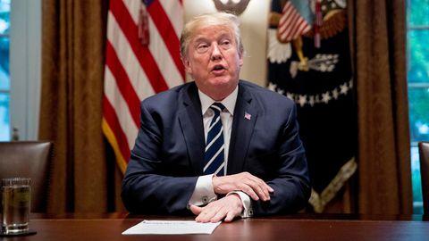 Donald Trump im Kabinett