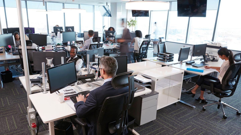 Die Vier-Tage-Woche einer Firma in Neuseeland macht alle glücklich