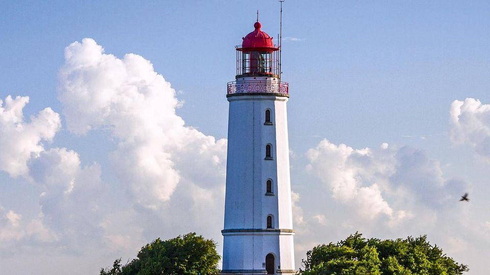 Das Wahrzeichen von Hiddensee ist der 28 Meter hohe Leuchtturm. Er wurde 1887/88 auf dem Schluckwieksberg im Norden der Insel erbaut und ist seitdem in Betrieb. In der Dunkelheit strahlt sein Licht bis zu 45 Kilometer weit auf die Ostsee hinaus