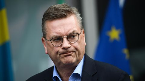 DFB-Präsident Reinhard Grindel im Porträt