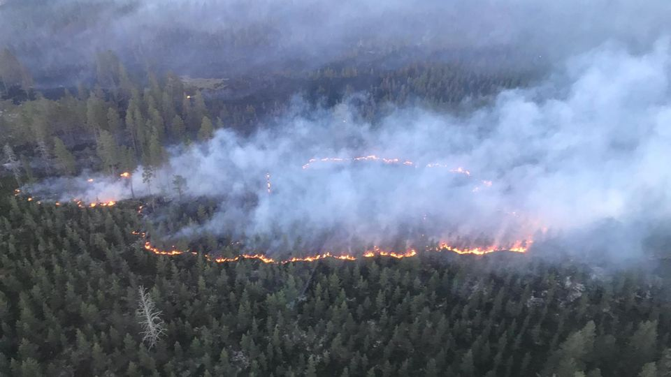 Schwedisches Militär wirft Bombe über Waldbrand ab