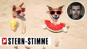 Micky Beisenherz über den Sommer