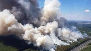 90 Hektar Wald stehen in Brandenburg in Flammen