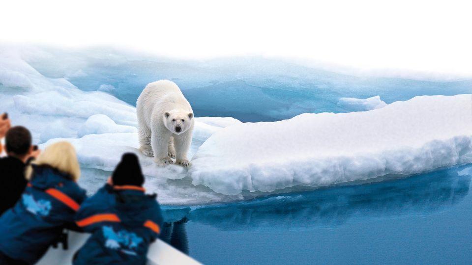 Begegnung mit sicherem Abstand: Passagiere beobachten einenEisbären, derauf einer Scholle in arktischen Gewässern treibt.