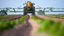 Hitzewelle: Bauernverband fordert eine Milliarde Euro