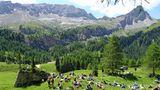 Avi Avital sitzt unter der Lärche mit seiner Mandoline und zwei Lautsprechern mitten in der Natur.Dieses entspannte Hörerlebnis inder Trentiner Bergwelt stellt das Gegenteil von dem musikalischen Massen-Events à la Sölden, Ischgl oder auf dem Jungfraujoch dar.