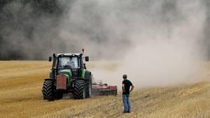 Bauern kämpfen mit Hitze-Dürre