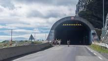 Im bergigen Nordnorwegen suchen Rentiere Schutz inStraßentunneln(Symbolbild)