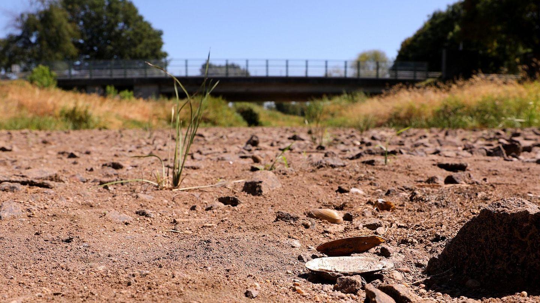 Heißzeit droht: Ausgetrocknetes Flussbett in Brandenburg