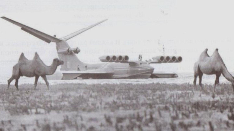 Eingesetzt wurden die Jets im kaspischen und im schwarzen Meer.