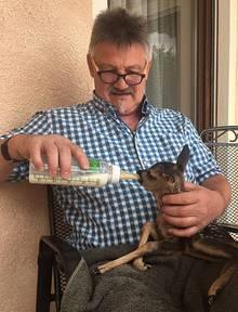Fütterung per Hand: Werner Frank