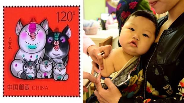 Die Schweine-Familie könnte eine neue Familien-Politik in China ankündigen