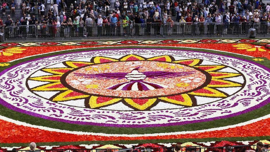 Brüssel, Belgien. Da ist er, der jährliche Blumenteppich auf dem Grote Markt in der belgischen Hauptstadt . Bis zum 19. August ist das empfindliche Werk zu sehen.