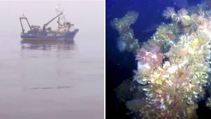 Zweiter Weltkrieg: Forscher entdecken 75 Jahre verschollenes Schiff