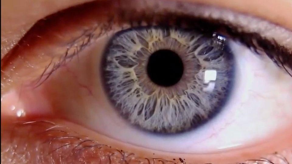 Der große Faktencheck: Augenschäden, Strahlung und Fruchtbarkeit: Wie gefährlich sind Smartphones?