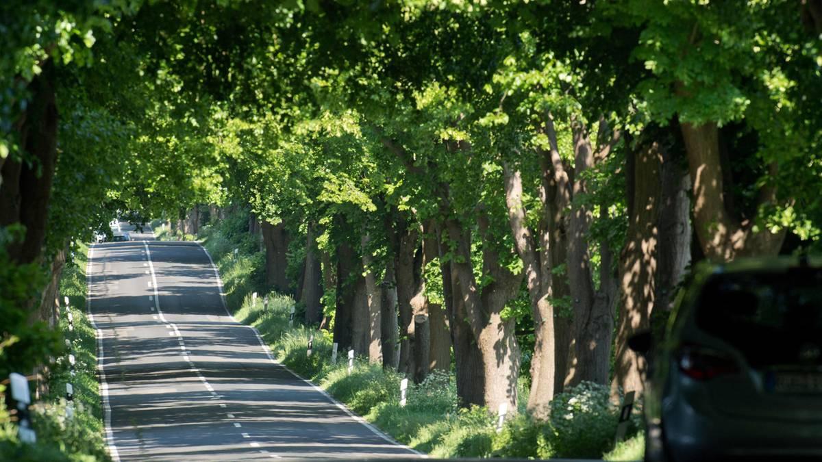 Schönste Routen: Wir sind die Coolsten, wenn wir cruisen – das sind Deutschlands Traumstraßen