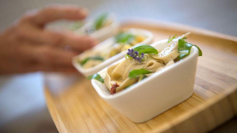 Pasta aus Insekten: Sieht doch lecker aus?