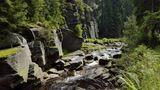 """Mitten durch das grüne Herz  Mitten durch das grüne Herz Deutschlands windet sich eine wahre Traumstraße durch die Kulturlandschaft des Thüringer Waldes. Die """"Naturpark-Route"""" führt vorbei an Wäldern, Flüssen, sanften Hügeln und lieblichen Städtchen mit Burgen und Schlössern. Rund 450 idyllische Kilometer vom lichten Gebirgsvorland durch dichte Wälder bis hinaus zu den schroffen Felsen des berühmten Rennsteigs. Wer hier keine Wanderschuhe und einen Rucksack im Kofferraum hat, der verpasst das Beste. Keine Lust auf Wandern? Dann warten die Wartburg, Schloß Altenstein und Renaissanceschloß Wilhelmsburg in Schmalkalden auf Erkundung."""
