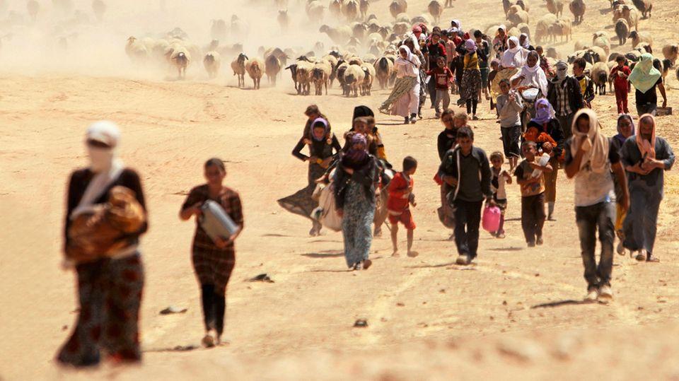 Jesiden fliehen im August 2014 vor den vorrückenden IS-Terroristen